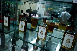 Rice whisky tonic infused with endangered tiger parts are sold at specialty shop in Mong La, Burma. The Chinese believe drinking the tonic gives them the strength and virility of the animal.