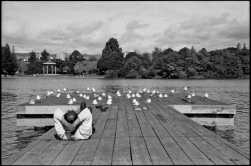 A jogger takes a break with the Seagulls on the docks at Lake Merritt in Oakland, CA.